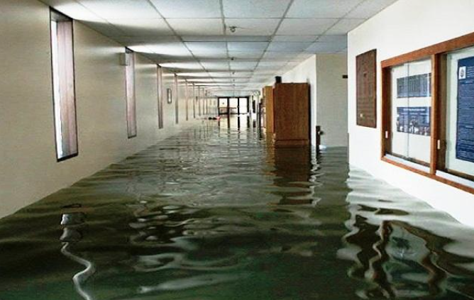 Water Damage Restoration Companies Vancouver