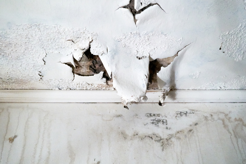 water damage coquitlam